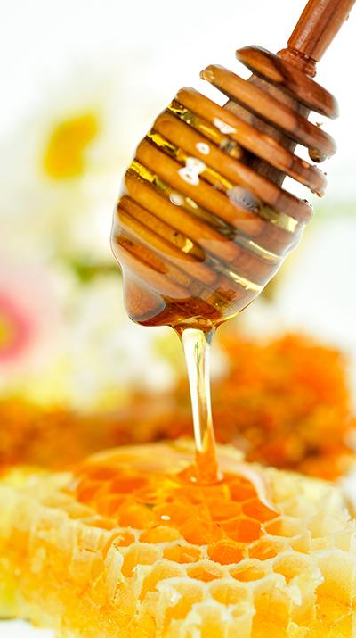 miel en polvo 2